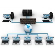 Balanta Profesional - Client